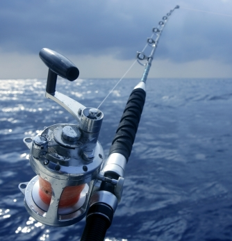 Rent a fishing rods!